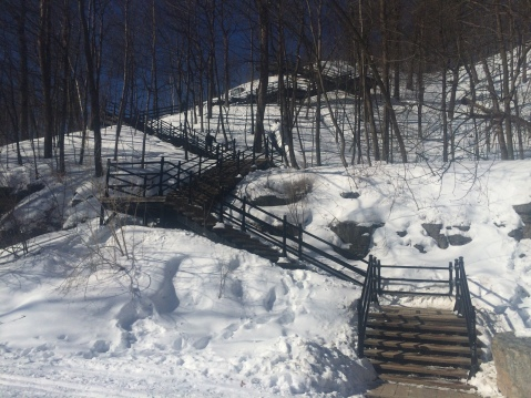 The steps leading up to the top of Mount Royal